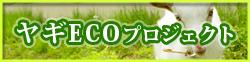 ヤギECOプロジェクト